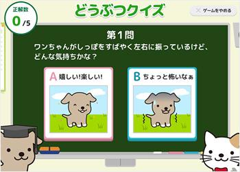 アニコムが手がけるアプリ「アニコムTOWN」では、保険以外にもペットの飼育に必要な情報を幅広く配信中